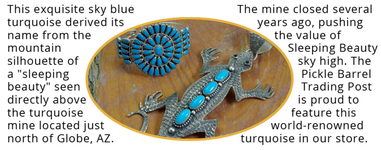 Turquoise Jewelry Lizard and Bracelet with Text Description